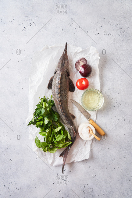 Overhead view of a raw sturgeon fish and fresh ingredients on light surface