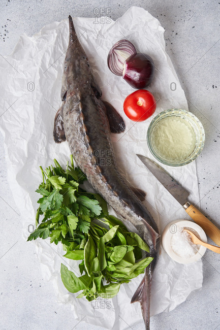 A raw sturgeon fish and fresh ingredients on light surface