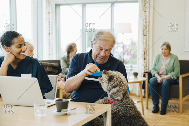 Smiling female nurse looking at senior man feeding dog in retirement home