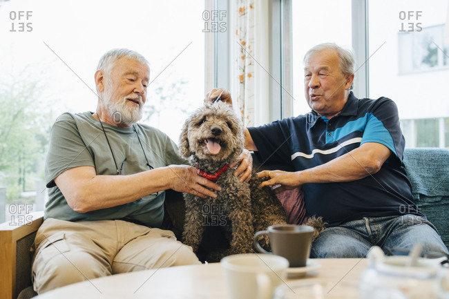Retired senior male friends talking while stroking pet sitting on sofa at elderly nursing home