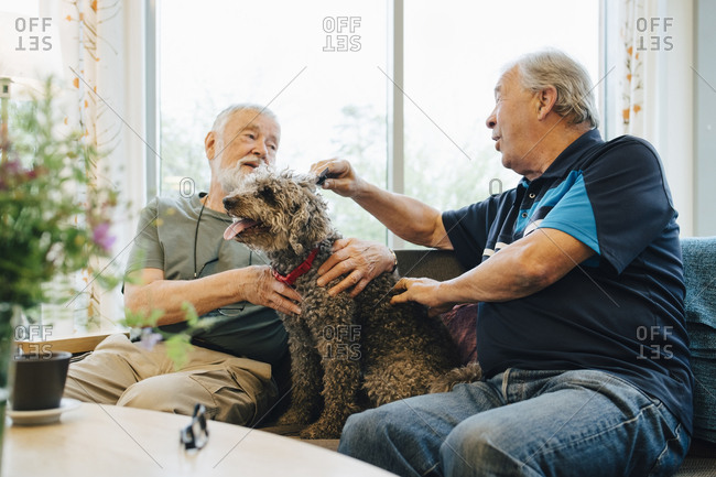 Senior men talking while stroking pet sitting on sofa at retirement home