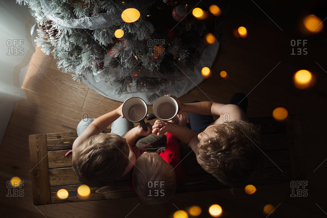Overhead view of three boys on bench having cocoa by the Christmas tree
