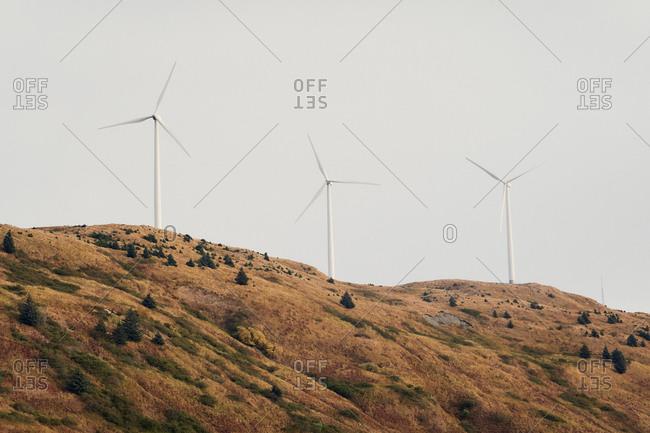 Wind turbines on a hilltop