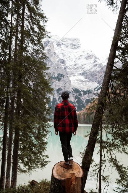 Back view of anonymous man traveler in casual wear standing on a tree cut trunk and delighting in view of turquoise lake with foggy Dolomites mountains on background at Italy