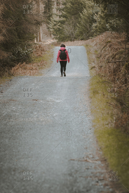 Back view of anonymous woman traveler in warm jacket walking on forest while visiting Tollymore Forest Park in Northern Ireland in spring day