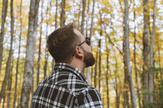 Side view of bearded male traveler in casual plaid shirt and trendy sunglasses standing and exploring autumn trees at forest