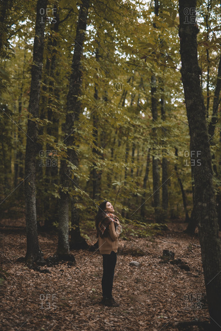 Side view of young woman in hat wrapping in checkered scarf while standing on dry leaves in autumn forest looking up