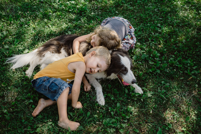 From above adorable children lying and embracing spot fluffy dog with ball in mouth in grass meadow in park