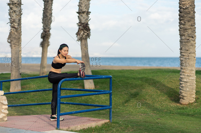 Side view of fitness Asian female in black sportswear doing stretching exercise with leg on metal fence while training on beach with palm trees trunks and green grass in background