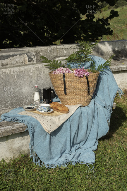 Cupcakes and cookies with teapot and milk on blue blanket served with straw basket with flowers on rocked bench at summer garden
