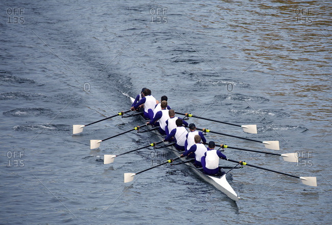 Lake Union rowing eights racing in Seattle, Washington