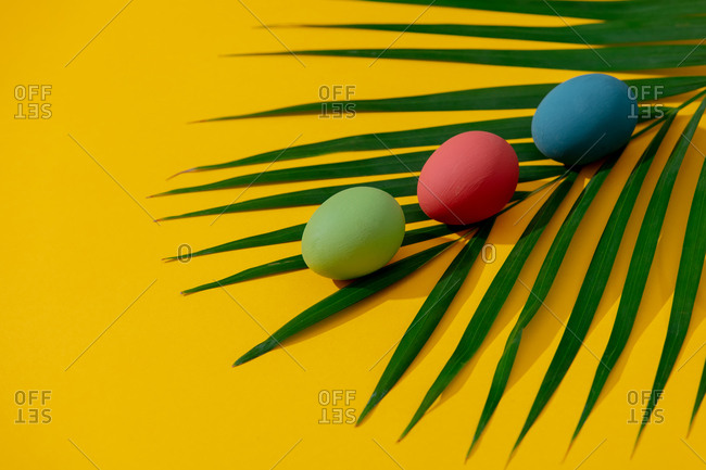 Colored Easter eggs and palm leaves on yellow background