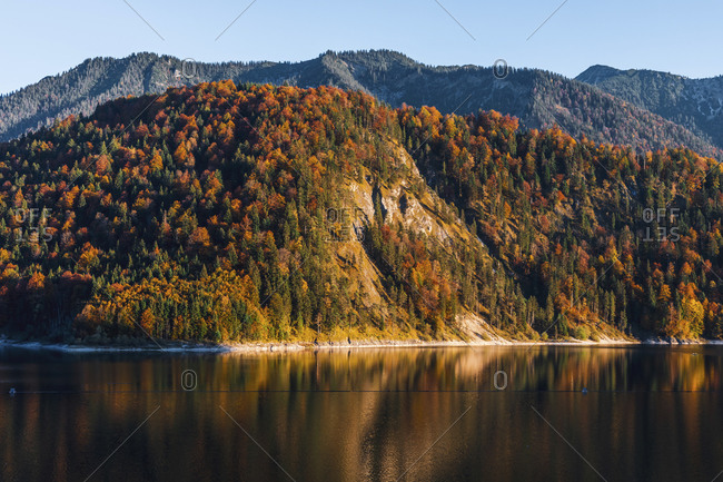 Scenic view of Sylvenstein lake against forest against clear sky during autumn- Bavaria- Germany