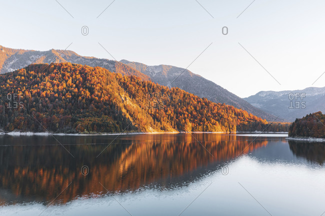 Scenic view of Sylvenstein lake by forest against clear sky during autumn- Bavaria- Germany