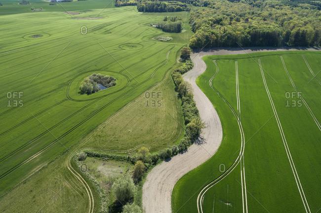 Germany- Mecklenburg-Western Pomerania- Aerial view of winding country road between vast wheat fields in spring