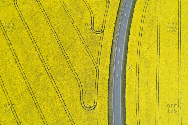 Germany- Bavaria- Aerial view of empty highway between vast rapeseed fields in spring