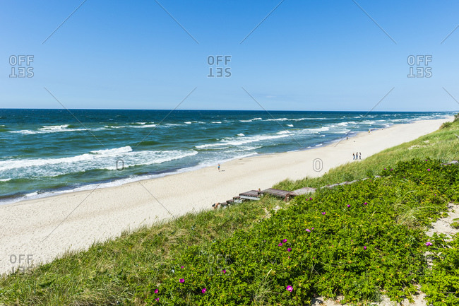 Scenic view of sea against clear blue sky during sunny day in Curonian Spit- Russia