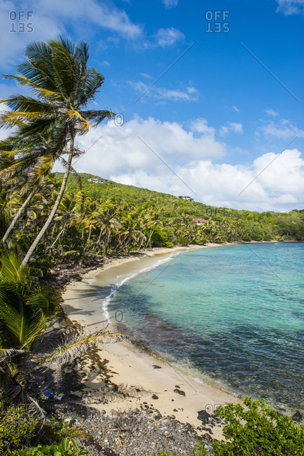 Scenic view of sandy beach at Industry Bay- Bequia- St. Vincent and the Grenadines- Caribbean