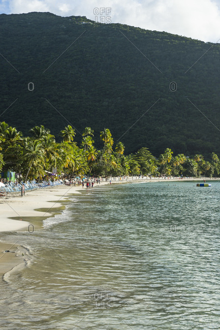 Scenic view of palm trees growing at beach against mountain- Tortola- British Virgin Islands