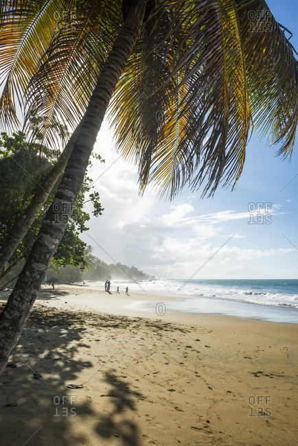 Scenic view of sea against sky during sunny day- Stonehaven bay- Tobago- Trinidad and Tobago- Caribbean