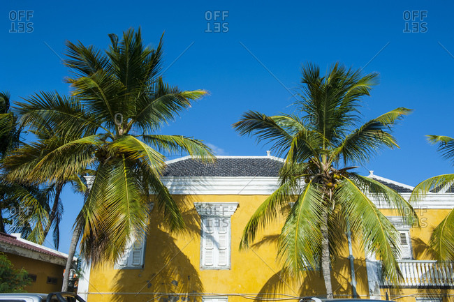 Low angle view of palm trees growing by house against clear blue sky during sunny day- Bonaire- ABC Islands- Caribbean