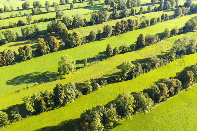 High angle view of Natural monument hedge landscape at Gaissach- Lenggries- Isarwinkel- Upper Bavaria- Bavaria- Germany