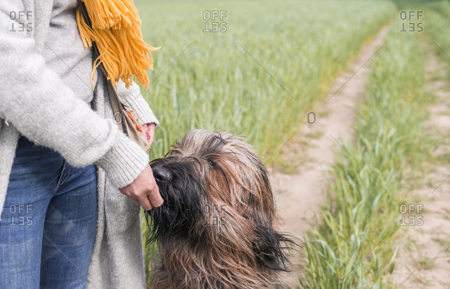 Woman feeding dog at a field