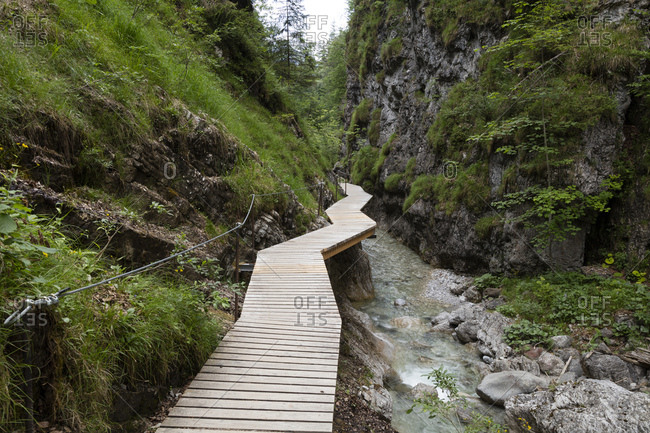 Austria- Tyrol- Erpfendorf- Boardwalk stretching along stream in Griesbach Gorge
