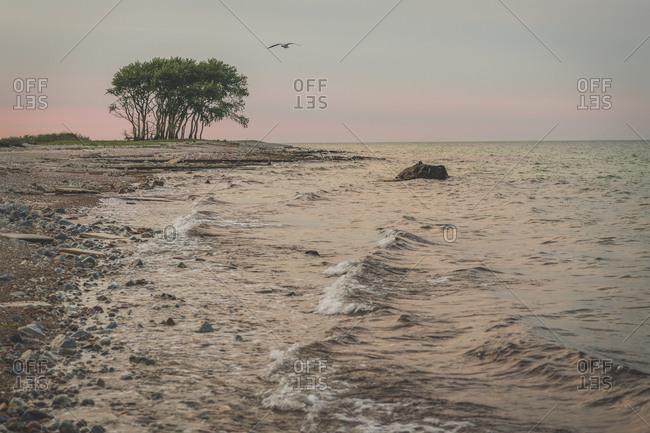 Germany- Schleswig-Holstein- Schleimunde nature reserve coast seen at dusk