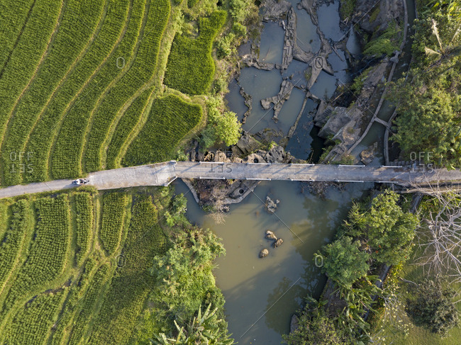 Aerial view of farmer riding motorcycle on road amidst agricultural land in Bali- Indonesia