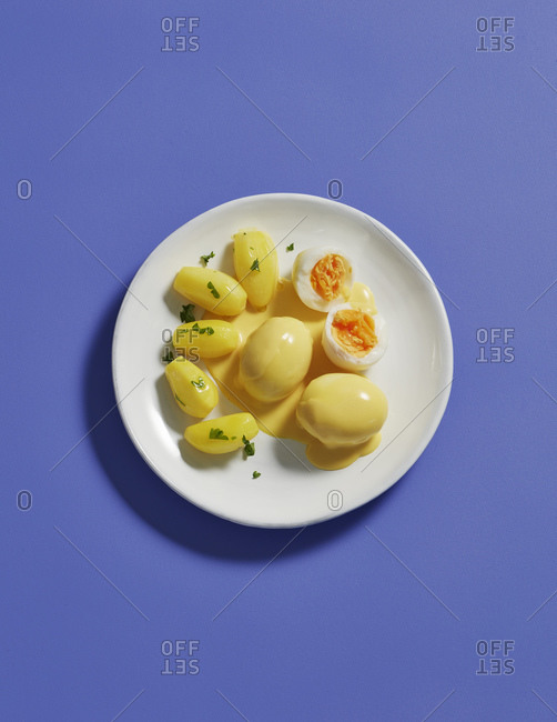 Directly above shot of meal in plate on blue background