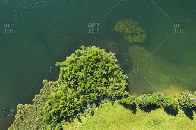 Drone shot of trees at Riegsee lakeshore in Bavaria- Germany