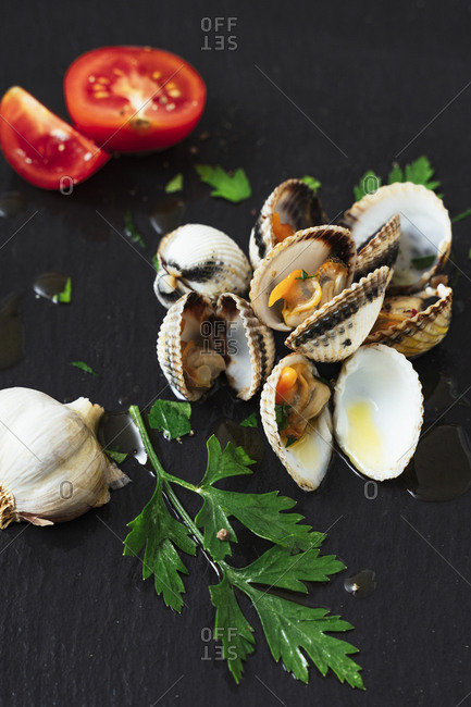 High angle view of clams and ingredients on kitchen counter