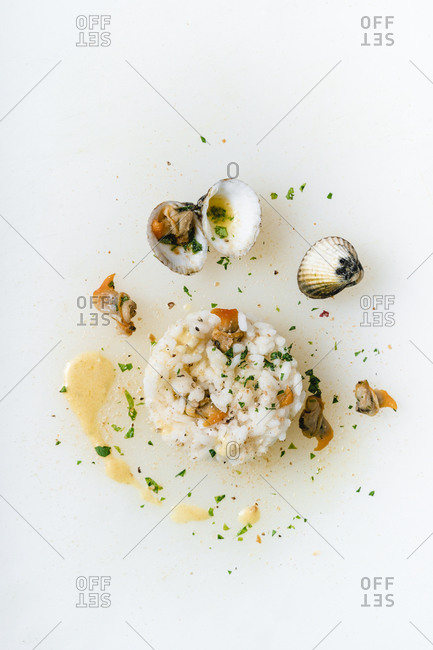 Directly above shot of clams and rice on white background