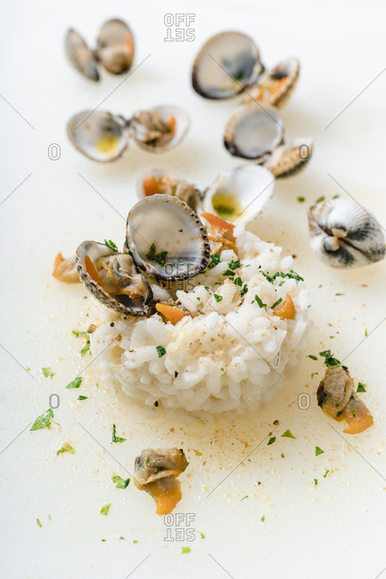 Close-up of clams and rice on white background