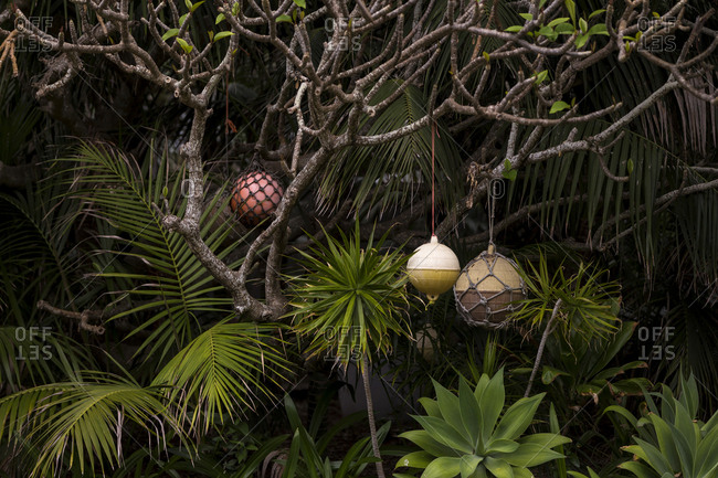Ornaments hanging from tropical foliage at a spa
