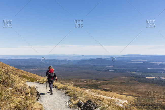 New Zealand- North Island- Clear sky over backpacker hiking in North Island Volcanic Plateau