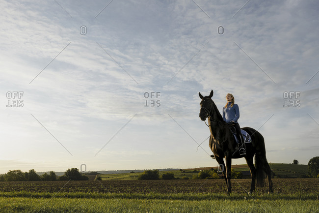 Woman on horse on a field in the countryside