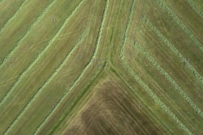 Germany- Bavaria- Aerial view of freshly mowed field