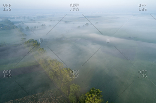 Germany- Bavaria- Aerial view of morning fog shrouding row of countryside trees