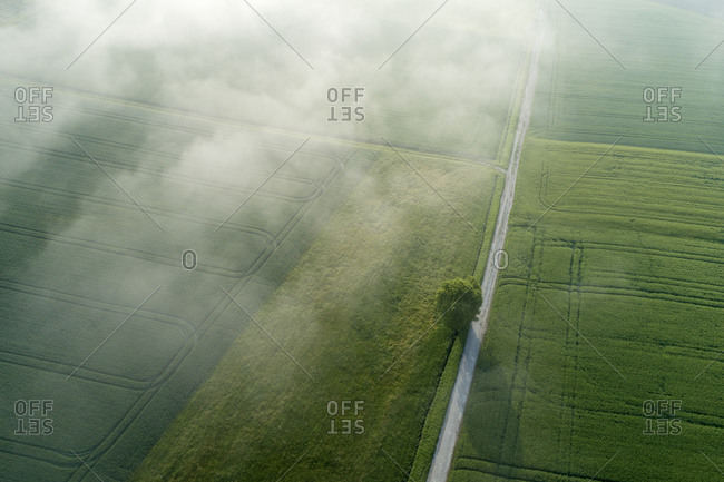 Germany- Bavaria- Aerial view of morning fog floating over country road and green fields in spring