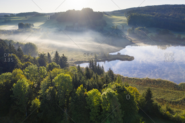 Germany- Bavaria- Upper Bavaria- Toelzer Land- Harmating- View of pond in landscape in morning light and mist