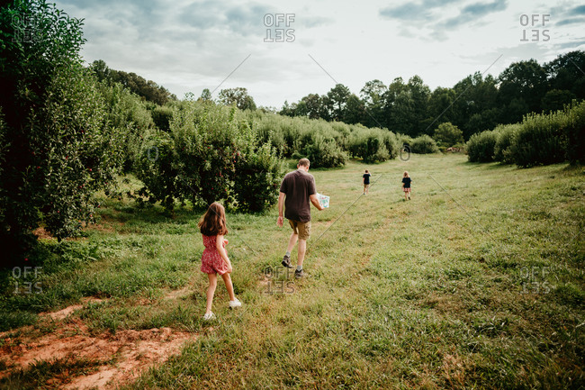 Family walking in green field on an apple farm