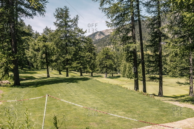 Green trees on golf course in the French Alps