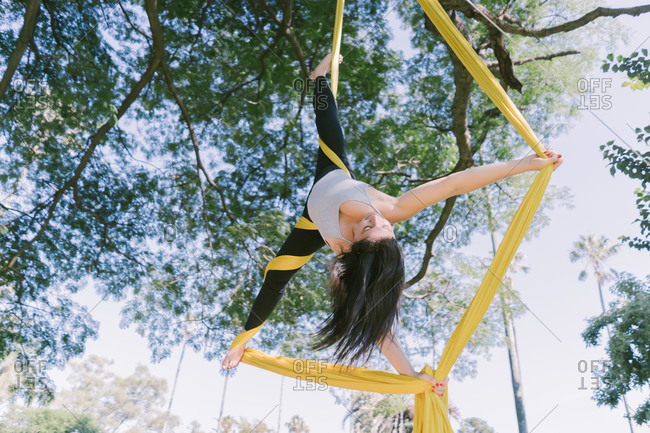 Aerial Silks Performer Hanging On A Tree