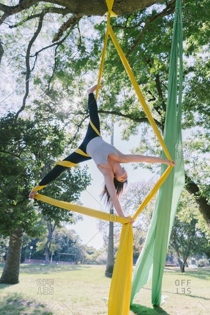 Aerial Silks Performer Hanging On A Tree