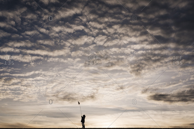 Silhouette of little girl playing with cattail under big sky at sunset