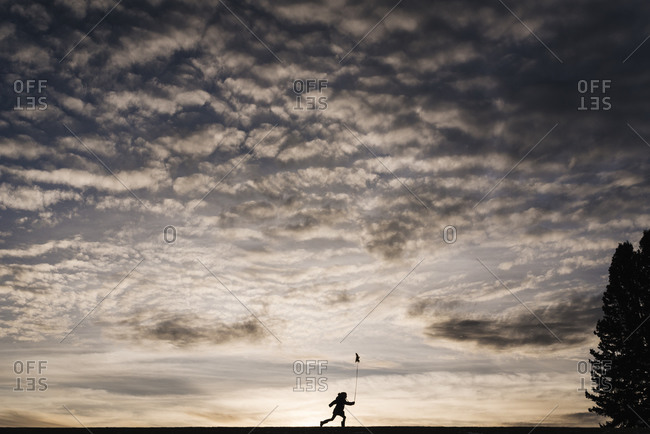 Silhouette of girl running with cattail at sunset under big sky