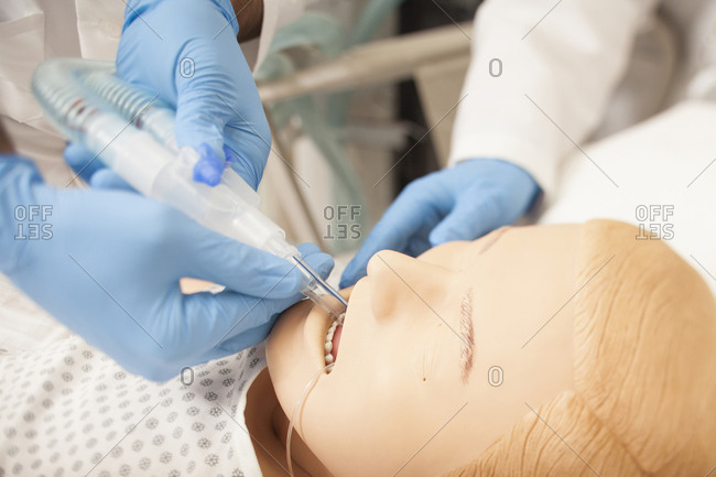 Close-up of medical students examining CPR dummy during training class