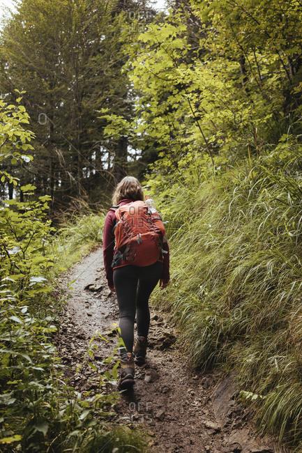 Rear view of female backpacker walking amidst plants in forest